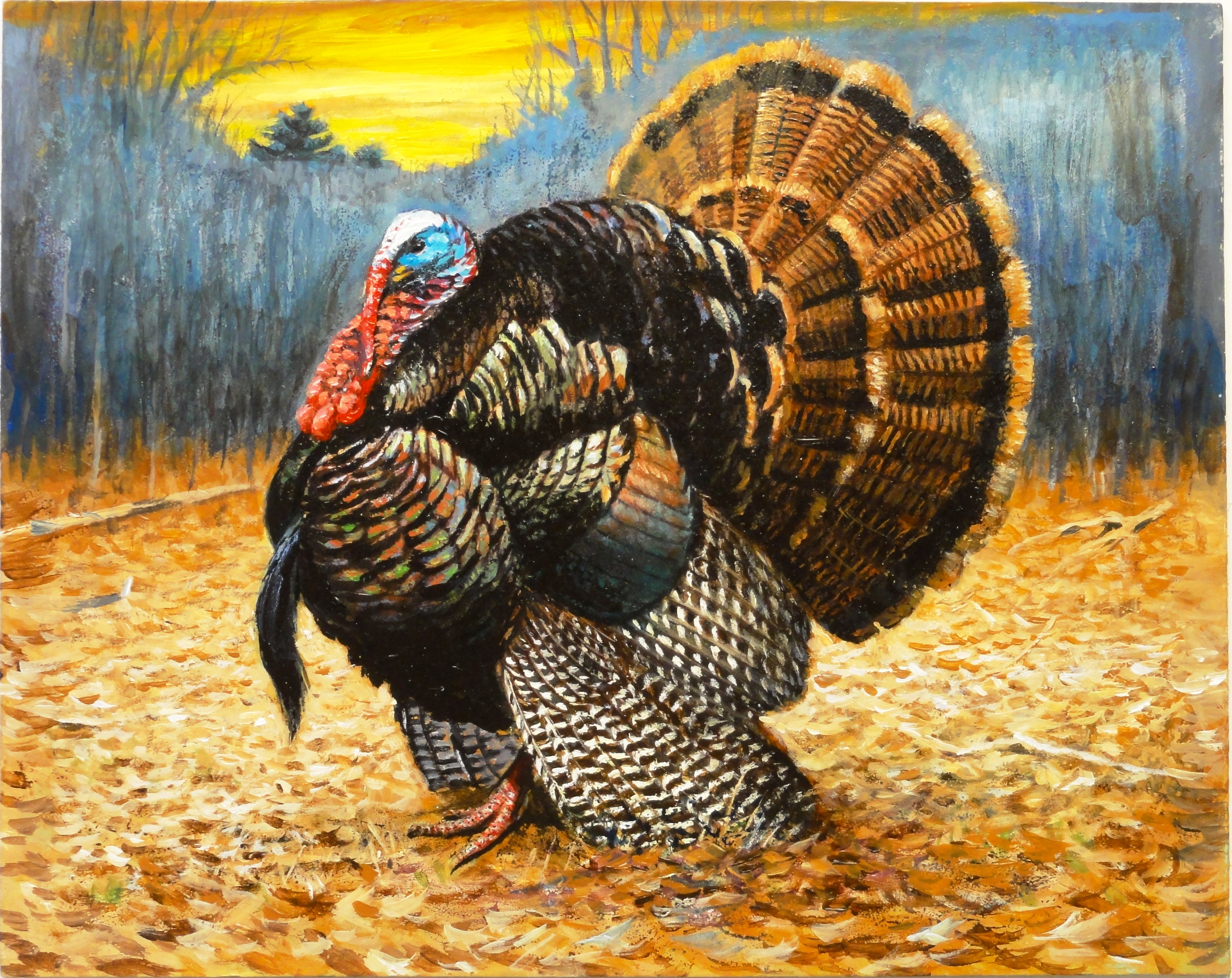 Instead of Fake Pardoning a Turkey This Year... - The Political ...