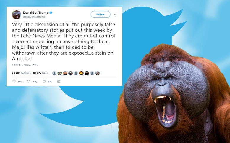 Angry Orangutan Who Kept Birther Movement Alive For 8 Years Tweets All Weekend About Fake News